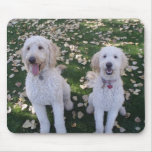 GoldenDoodles in the Fall Leaves Mouse Mats