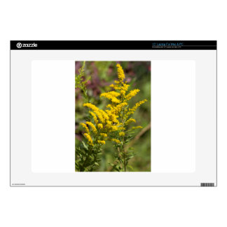 Goldenrod Wildflowers Laptop Decal