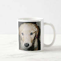 GOLDENS AND CANCER MUGS! COFFEE MUG