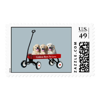 Goldens In Wagon Postage