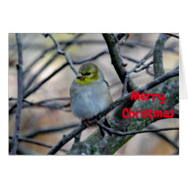 Goldfinch 3900 Christmas Card