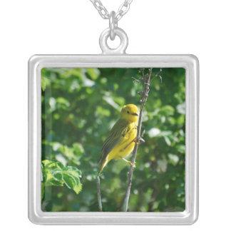 Goldfinch amarillo grimpola personalizada