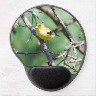 Goldfinch americano alfombrillas con gel