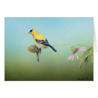 Goldfinch americano Notecards - Tim Larson Tarjeta De Felicitación