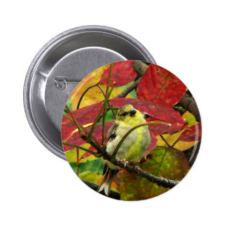 Goldfinch and Autumn Leaves 2 Inch Round Button