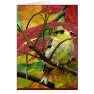 Goldfinch and Autumn Leaves