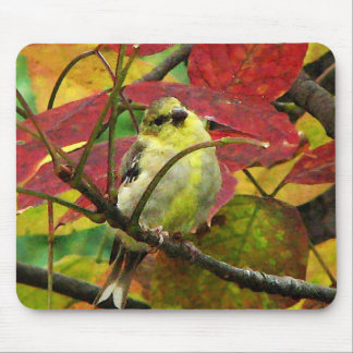 Goldfinch and Autumn Leaves Mouse Pad
