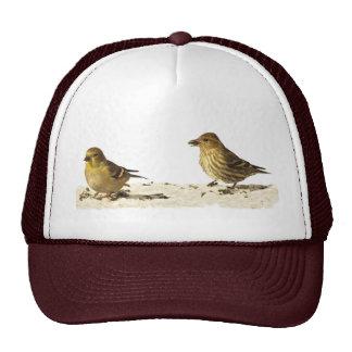 Goldfinch and Pine Siskin Trucker Hat