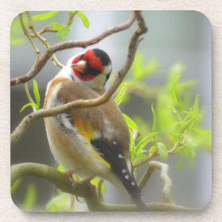 Goldfinch Beverage Coaster