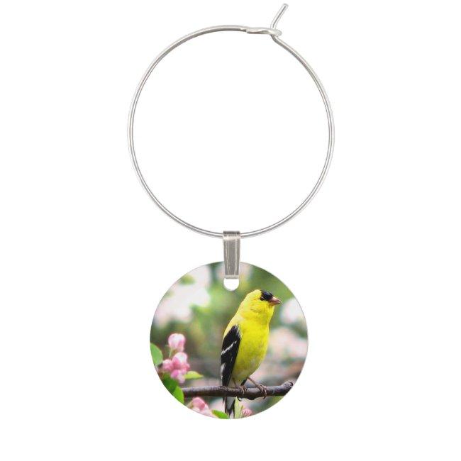 Goldfinch Bird Animal Wine Charm