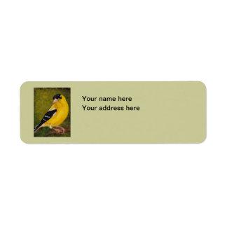 Goldfinch Bird Art Address Label