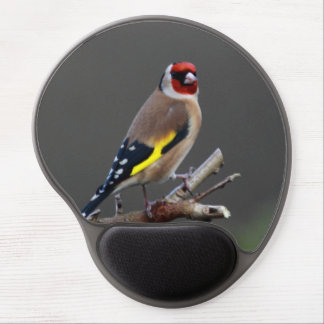 Goldfinch bird gel mouse pad