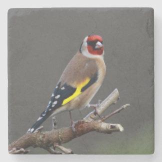 Goldfinch bird stone coaster