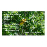 Goldfinch Double-Sided Standard Business Cards (Pack Of 100)