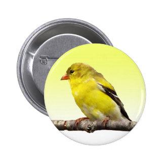 Goldfinch 2 Inch Round Button