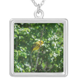Goldfinch Collares