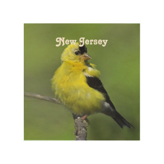 Goldfinch de New Jersey Impresión En Madera