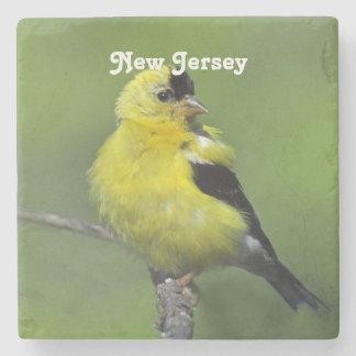 Goldfinch de New Jersey Posavasos De Piedra