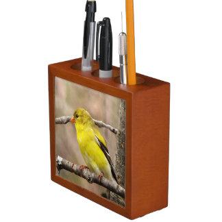 Goldfinch Desk Organizer