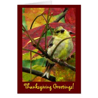 Goldfinch en acción de gracias del otoño tarjeta de felicitación