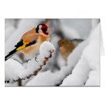 Goldfinch en nieve felicitacion