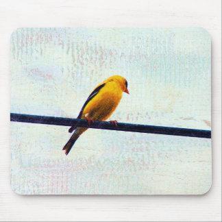 Goldfinch en una línea eléctrica mouse pad