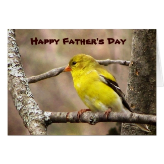 Goldfinch Fathers Day