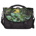 Goldfinch femenino bolsas para portátil