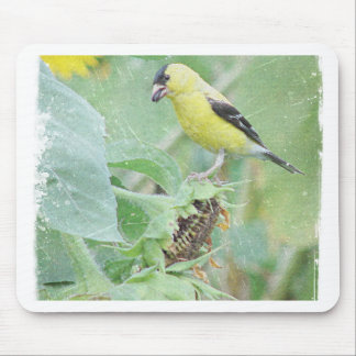 Goldfinch Grunge Mouse Pad