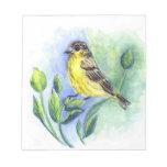 Goldfinch, hembra, lápiz de la acuarela bloc de notas