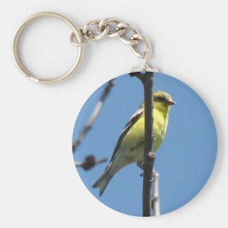 Goldfinch in a tree keychain