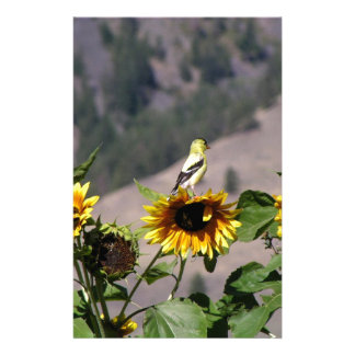 Goldfinch in the Sunflower patch Stationery