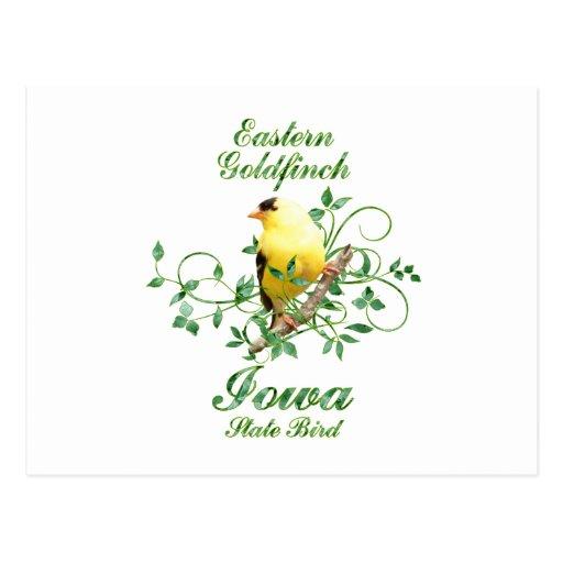 Goldfinch Iowa State Bird Post Cards