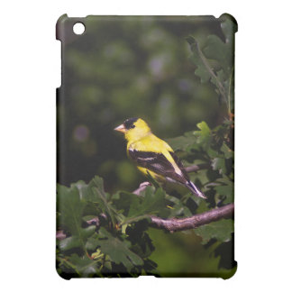 Goldfinch iPad Mini case