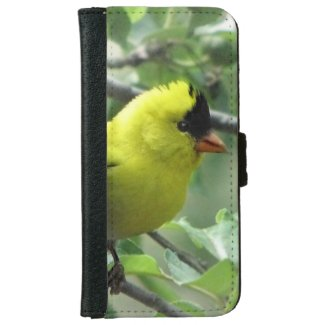 Goldfinch iPhone 6 Wallet Case