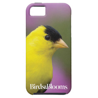 Goldfinch iPhone SE/5/5s Case
