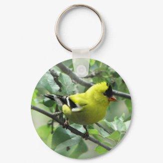 Goldfinch Keychain keychain