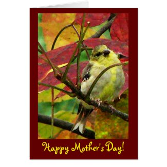 Goldfinch Mother's Day Card