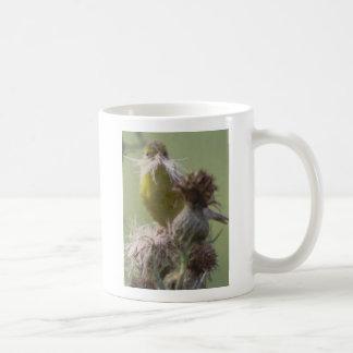Goldfinch moustache mug