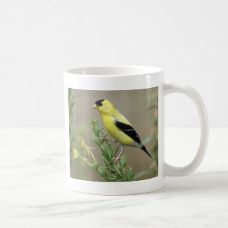Goldfinch Classic White Coffee Mug