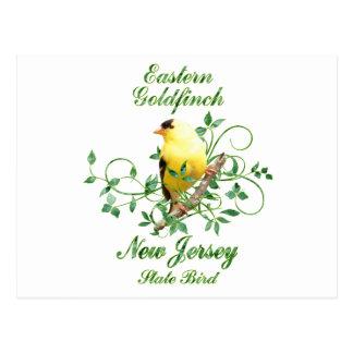 Goldfinch New Jersey State Bird Postcards