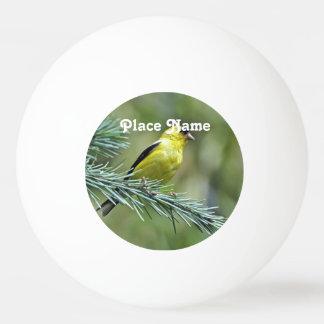 Goldfinch Pelota De Tenis De Mesa