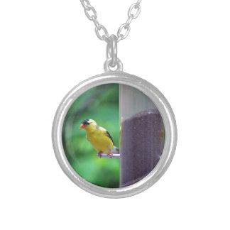 Goldfinch Pendientes Personalizados