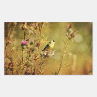 Goldfinch Photo Rectangular Sticker