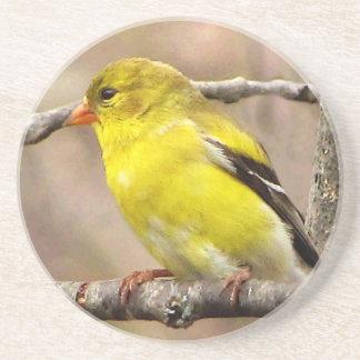 Goldfinch Posavasos Personalizados