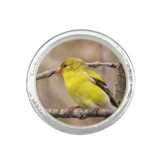 Goldfinch Ring