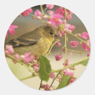 Goldfinch Classic Round Sticker