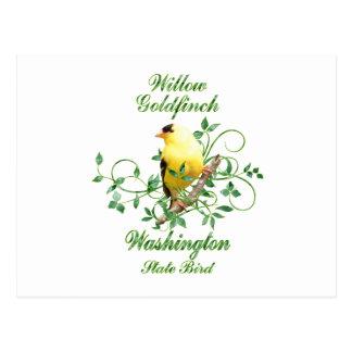 Goldfinch Washington State Bird Postcard