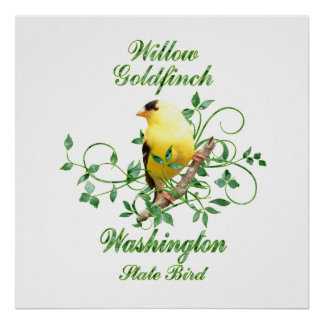 Goldfinch Washington State Bird Posters