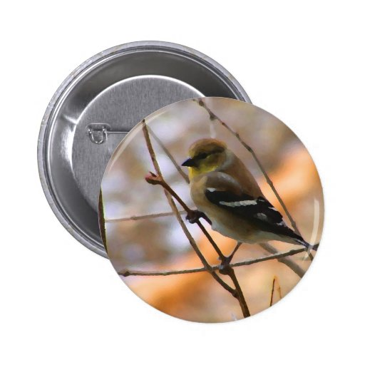 Goldfinch Watercolor Buttons